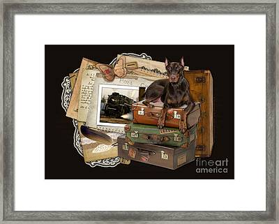 Traveling Red Doberman Framed Print by Renae Laughner