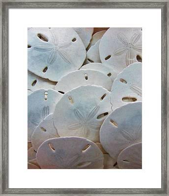 Treasure Trove Framed Print by Christine  Fifer