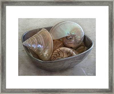 Treasures From The Sea Framed Print by Marilyn Atwell