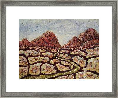 Treasures Of Copper Canyons Framed Print by Jan Reid