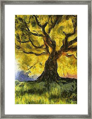 Tree  A La Van Gogh Framed Print by Gun Legler