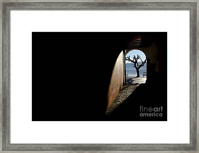 Tree And Arch Framed Print
