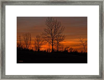 Tree At Sunset Framed Print by Edward Peterson