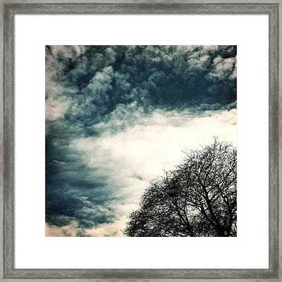Tree Crown Framed Print by Joana Kruse