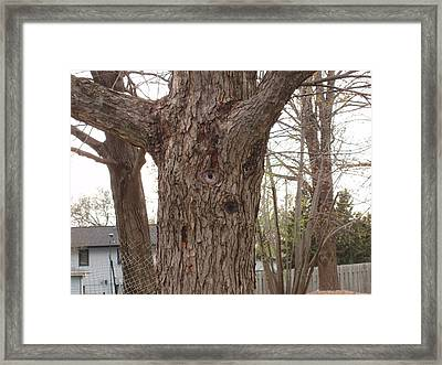Tree Face Framed Print by Lori  Theim-Busch