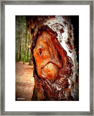 Tree Face Framed Print by Vix Views