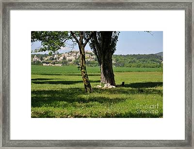 Tree In  A Field With Vallauris Village Framed Print