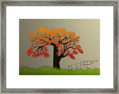 Tree In Seasons - 4 Framed Print