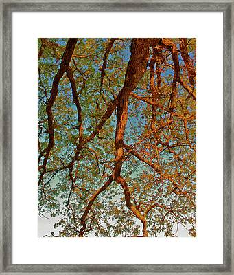 Tree Lightning Oil Painting Style Framed Print