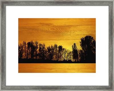 Tree Line On Wood Framed Print by Ann Powell