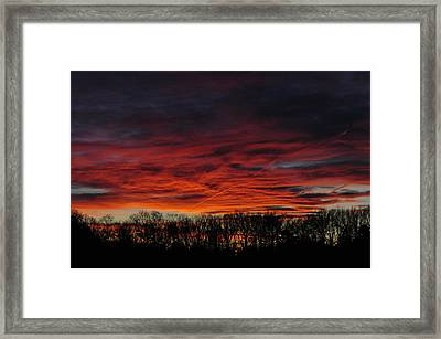 Tree Line Sunset Framed Print by Peter  McIntosh