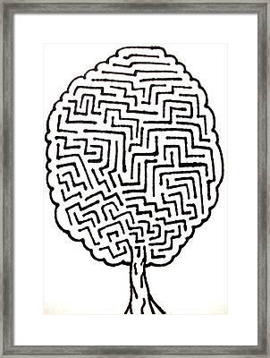 Tree Maze Framed Print