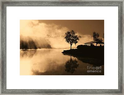 Tree Midst The Fog- Sepia Framed Print by Gina Collins