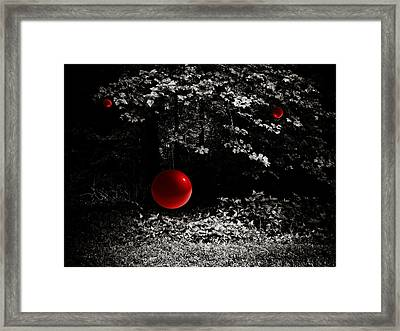 Tree Of Knowledge Framed Print by Jessica Brawley