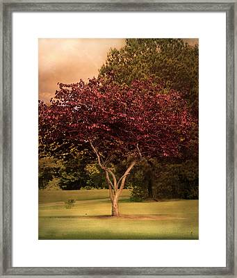 Tree Of Love Framed Print by Jai Johnson