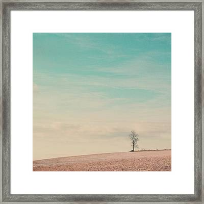 Tree On A Hill Top Framed Print by Laura Ruth