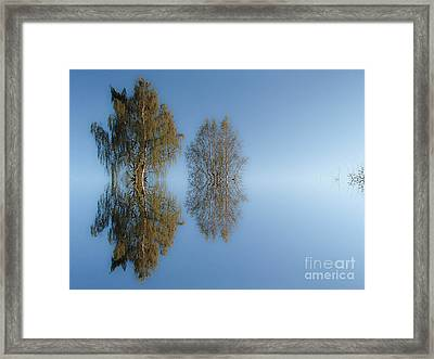 Tree Reflection In Vaerebrovej Framed Print by Michael Canning