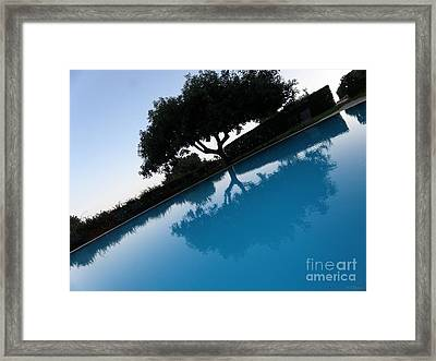 Framed Print featuring the photograph Tree Reflection by Tanya  Searcy