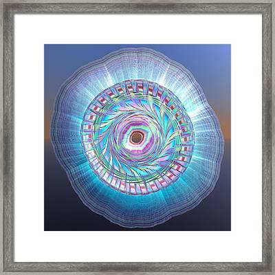 Tree Rings Framed Print by Betsy Knapp