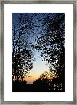 Tree Silhouette At Sunset 1 Framed Print