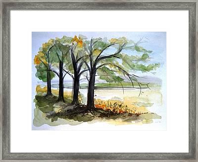 Tree Silhouette Framed Print