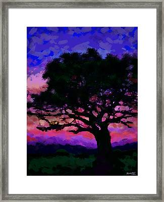 Tree Siluette At Sunset  Framed Print