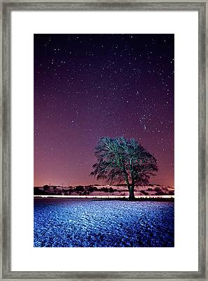 Tree Snow And Stars Framed Print by Paul McGee