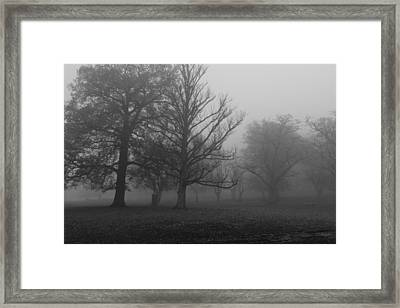 Framed Print featuring the photograph Trees And Fog by Maj Seda