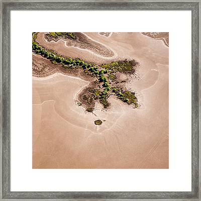 Trees And Mudflats Framed Print by Judi Mowlem