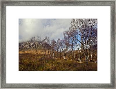 Trees Below Stob Dearg Framed Print by Gary Eason