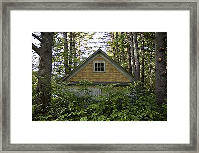Trees Grow Up Around An Abandoned House Framed Print by Hannele Lahti