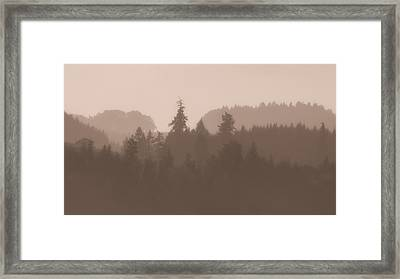Framed Print featuring the photograph Trees by Katie Wing Vigil