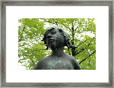 Trees May Cry Framed Print by Steve K