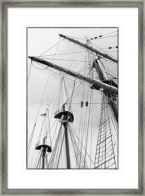 Trees On A Ship II Framed Print