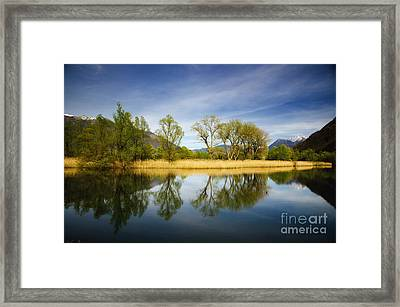 Trees Reflections On The Lake Framed Print