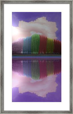 Trees With Color And Light Framed Print