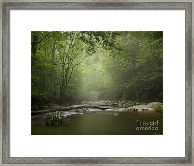 Tremont In Fog Smokey Mountains Framed Print by Brian Stamm