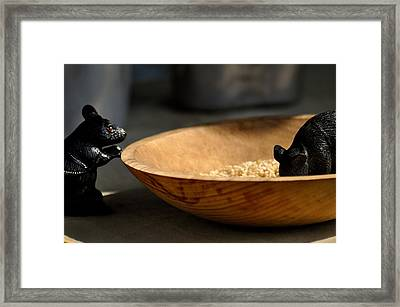 Trench Rats Framed Print by Rachel Rodgers