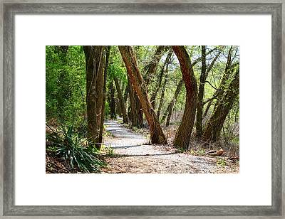 Framed Print featuring the photograph Trestle Walk by Kathryn Meyer