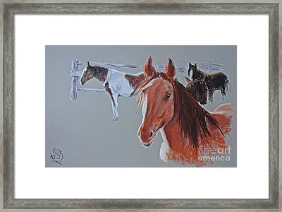 Triangle X Horses Series Number One Framed Print by Paul Miller