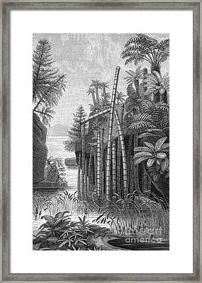 Triassic Period Framed Print by Science Source