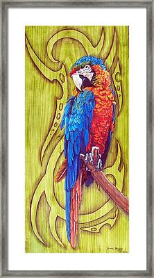 Tribal Macaw Framed Print by Diana Shively
