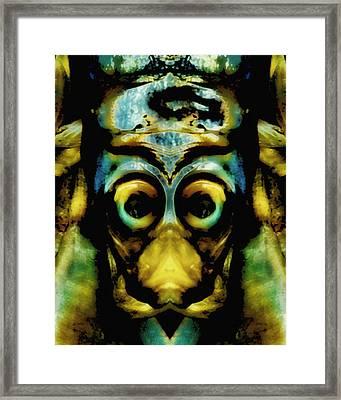 Tribal Mask Framed Print by Skip Nall