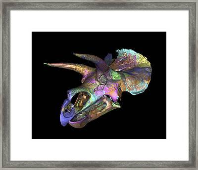 Triceratops Dinosaur Skull Framed Print by Smithsonian Institute
