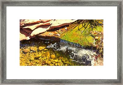 Trickle Waterfall Framed Print by Usha Shantharam