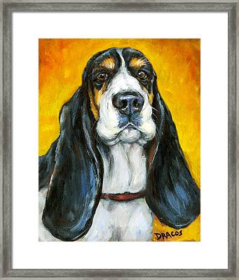 Tricolored Basset Hound On Gold Framed Print by Dottie Dracos