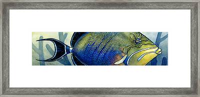 Triggerfish Framed Print by Alyssa Parsons