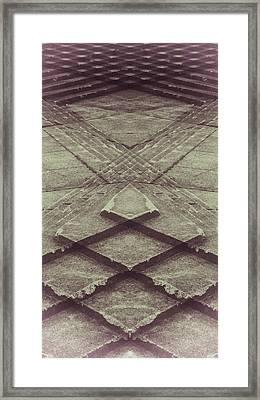 Trip Framed Print
