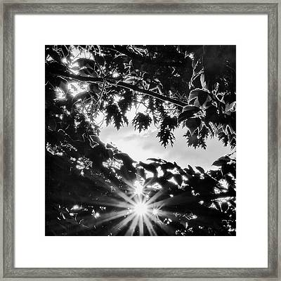Triple Bluff Framed Print by Nathan Larson