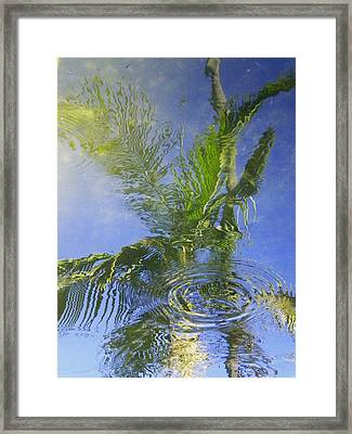 Tropical Abstraction Framed Print by Sandy Fisher